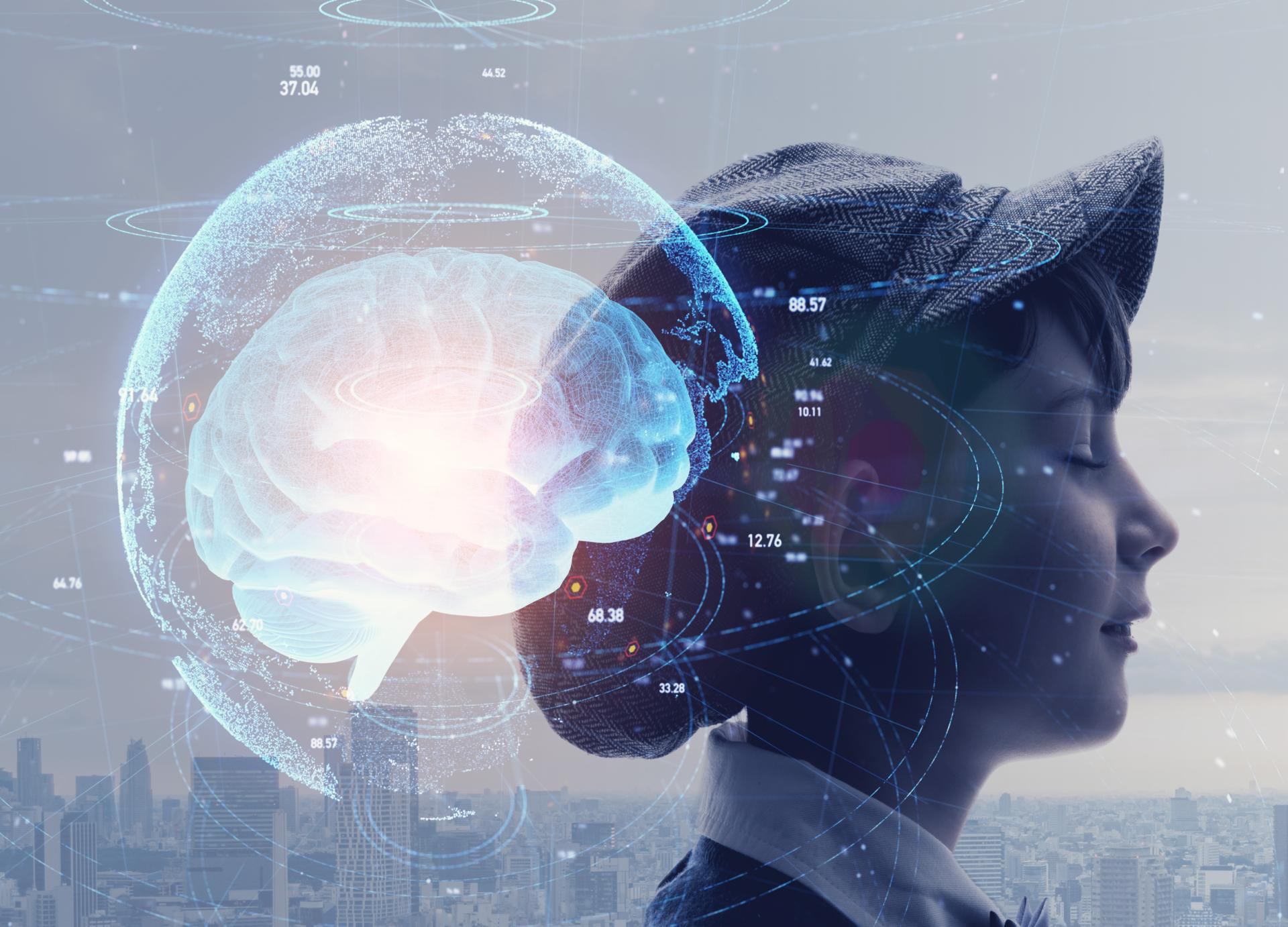 IQ, Brain