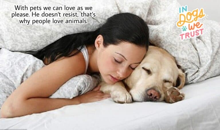 Pet lover, animal lover, love for animals, dogs,
